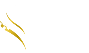 THE MOTOR CITY – BY SHAIKHANI
